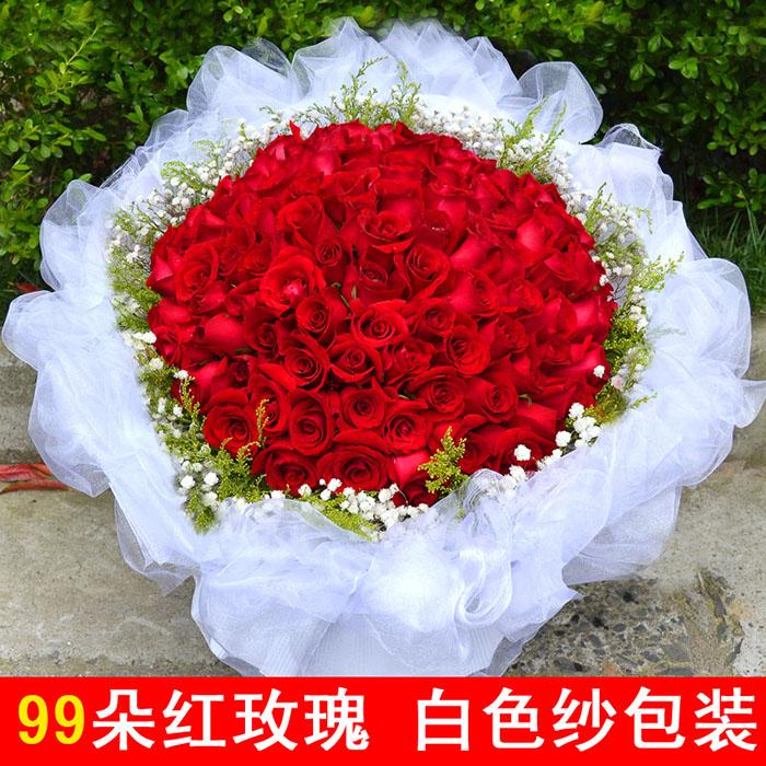 99枝红玫瑰 黄莺满天星围绕